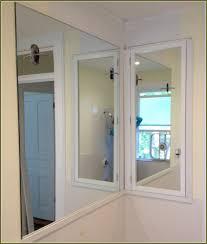 Recessed Bathroom Mirror Cabinets Recessed Bathroom Cabinet No Mirror Tomthetradercom