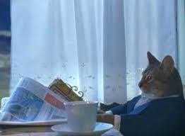 Sophisticated Mordor Cat Blank Template - Imgflip via Relatably.com