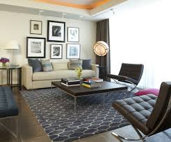 Rugs In Living Rooms Tropical Area Rugs Living Room Contemporary With Irvine Shag Area