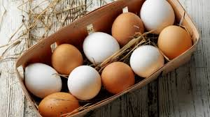 Image result for picture of eggs