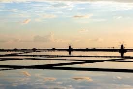 """Saline (saltpans) di Trapani and Paceco"" Oriented Nature Reserve ..."