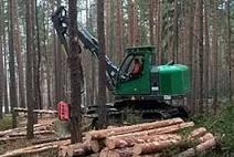 NEUSON FOREST   Équipements Marquis