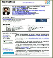 good social media resume 1000 images about infographics resume social media marketing resume sample