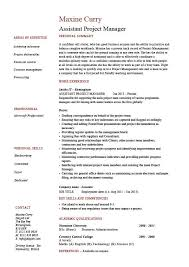 assistant project manager resume sample template administration key skills budgets duties resume samples for project managers