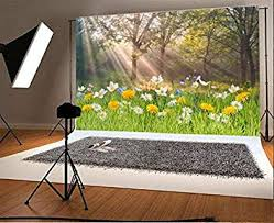 Laeacco 7x5ft Vinyl Photography Backdrop Spring ... - Amazon.com