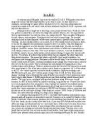 essay in third personthird person essay example  how to write essay example  writing     th