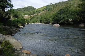 aguas estancadas  Images?q=tbn:ANd9GcSI41-87enA4ofifr4PWW3vepnbPqnNoeMU1fji8s7rbYLPcy-ImA