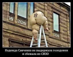 Мы благодарны Европарламенту за усилия, прилагаемые в освобождении Савченко, - МИД - Цензор.НЕТ 3079