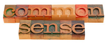 words sample essay on common sense