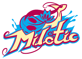 Milotic Banner