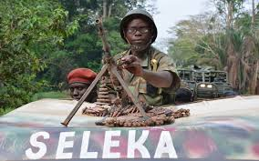 Resultado de imagen de Seleka?