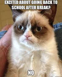 ideas about back to school meme on pinterest  old school   thoughts you have when returning to school after break