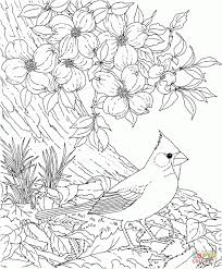 Small Picture Coloring Pages Realistic Coloring Pages For Adults Realistic