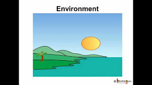 science environment pollution hindi