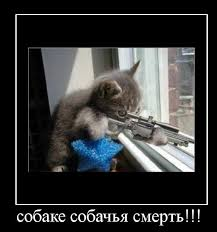 """""""В причине смерти указывается: упал со ступеньки, сбит авто, попал под поезд. Плюс, уволены задним числом"""", - боевики на Донбассе жалуются на убийства под видом несчастных случаев - Цензор.НЕТ 4041"""