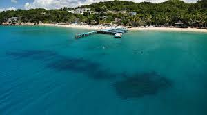 Aquatica <b>Dive</b> & <b>Surf</b> | <b>Surf</b>, Snorkel, & <b>Scuba Diving</b> Puerto Rico