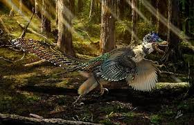<b>New</b> Fossil Reveals Velociraptor Sported <b>Feathers</b> - Scientific ...