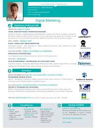 17 best images about cv infographic resume cv 17 best images about cv infographic resume cv design and cv template