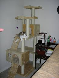 <b>Cat tree</b> - Wikipedia