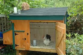 chicken house plan Archives   tcfnectchapterChicken coop   it    s inexpensive to buy a Dozen Eggs
