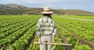 Resultado de imagen de mujer rural en andalucia
