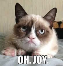 meme on Pinterest | Lego Movie, Lego and Grumpy Cat via Relatably.com
