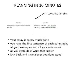 website writes essays for you website to write essays   do my computer homework best custom essay writing service