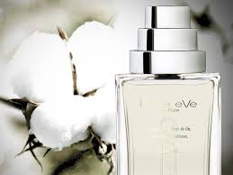 <b>Pure</b> eVe, Just <b>Pure</b>. An unique... - <b>The Different Company</b> | Facebook