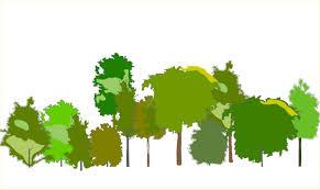 plant symbols in elevation gcadplus elevationgroup