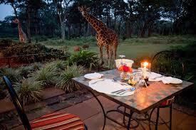 Картинки по запросу Giraffe Manor hotel