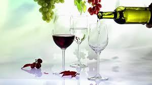 varios vinos – aprende sobre vinoshelicopter parents essay