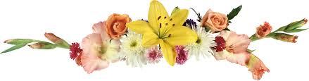 Resultado de imagen para separador para blog flores