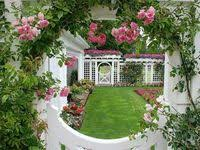 398 Best General gardening ideas images in 2020 | <b>Garden design</b> ...