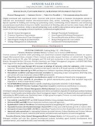 executive resume format resume sample senior sales executive lower ipnodns ru