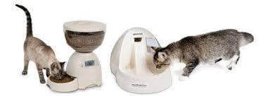 Купить автоматические <b>поилки</b>, кормушки для кошек по низкой ...