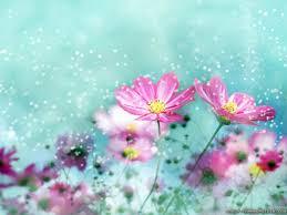 வால்பேப்பர்கள் ( flowers wallpapers ) - Page 5 Images?q=tbn:ANd9GcSKNUirhLysHn6w-h7D-lFwRzSLf6TuTcg6rdnBmvknLQT8PUOrPw