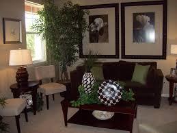 model living rooms: transitional model home portfolio traditional living room