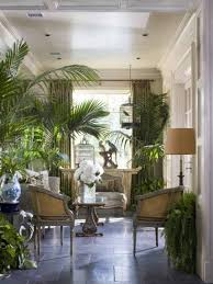 tropical living rooms: living room tropical living rooms tropical living rooms with indoor plants and birdcage