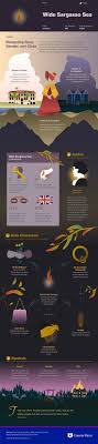 best images about literature infographics the jean rhys s wide sargasso sea infographic to help you understand everything about the book visually learn all about the characters themes and jean rhys