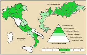 File:Plantago atrata fuscescens - Distribuzione.png - Wikipedia