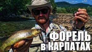 Ловля ручьевой форели на горных реках на <b>блесны Crazy Fish</b> ...