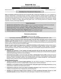 cfo resume bullet points sample customer service resume cfo resume bullet points ceo cfo executive resume example resume exampl senior finance executive resume cfo