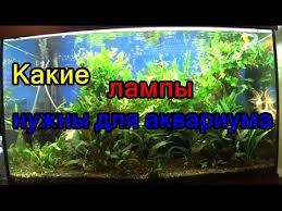 Какие лампы нужны для аквариума - YouTube