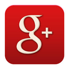 Image result for google+ logo