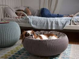 Вязаная <b>лежанка</b> для собаки. | Кровати для животных, Кошачьи ...