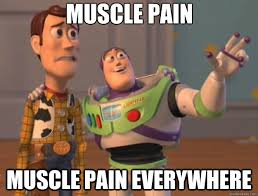 Muscle PAIN muscle PAIN EVERYWHERE - Toy Story - quickmeme via Relatably.com