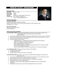 sample resume format s executive resume pdf sample resume format s executive vp s sample resume executive resume writing services naukri resume format
