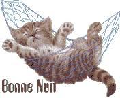 """Résultat de recherche d'images pour """"chat bonne nuit"""""""