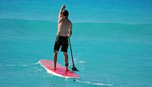 10 Best <b>Paddle Board Leashes</b> in 2019 [Buying Guide] - Globo Surf