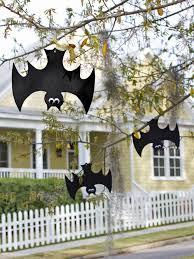 love halloween window decor: scaredy cat pumpkin carving idea original layla palmer halloween hanging bats beauty xjpgrendhgtvcom